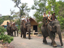 Community-based tourism being developed in Dak Lak