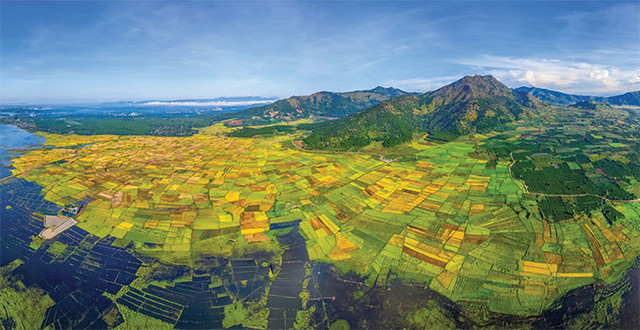 The Ngo Son rice fields in Gia Lai province are as famous as the Mu Cang Chai terraced rice fields in Vietnam's north. Surrounded by immense mountains, when the harvest season comes around this 400-ha area becomes a splendid landscape of yellow, green, and brown, with blue sky above.